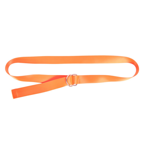 Orange belt Abby